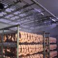 Зал душирования колбас с тангенциальными форсунками